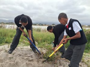 A day at the Vlei (1)