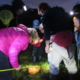 Exciting guided frog walks